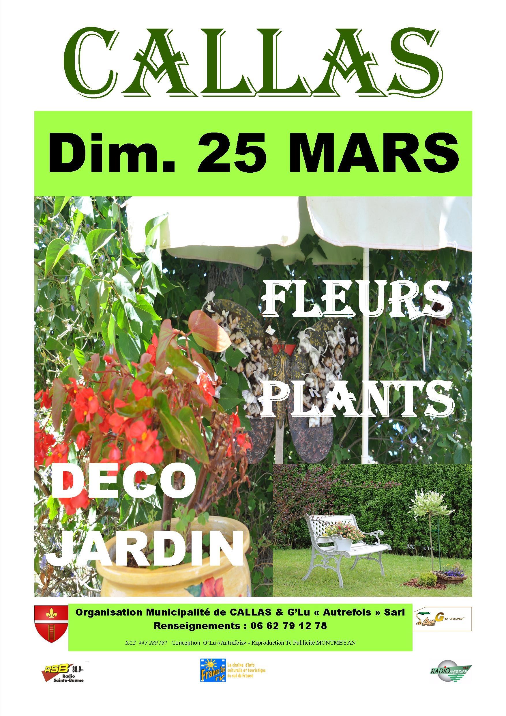 MARCHÉ AUX FLEURS PLANTS DECO JARDIN CALLAS