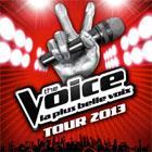 THE VOICE TOUR 2013, CONCERT NICE
