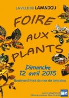 FOIRE AUX PLANTS LE LAVANDOU
