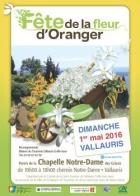 FÊTE DE LA FLEUR D'ORANGER VALLAURIS