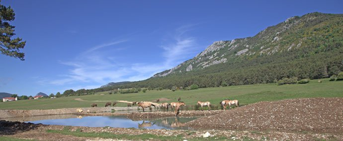 photo Discovering Monts d'Azur Wildlife Reserve