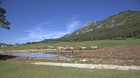 Discovering Monts d'Azur Wildlife Reserve