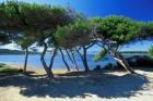 Presqu'île du Gaou