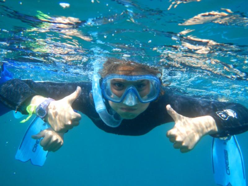 achat original choisissez le dégagement style attrayant Balades aquatiques et sentiers sous-marins - Tourisme Côte d ...