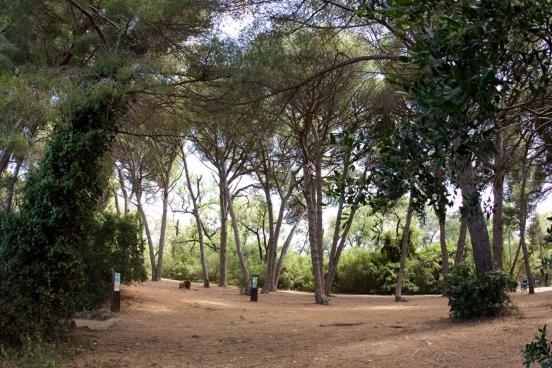 Ile Sainte Marguerite  Tourism Cannes