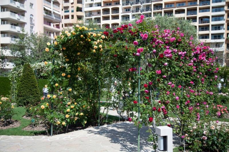 Design jardin japonais monaco nanterre 2121 jardin des plantes angers jardin potager a - Mobilier jardin pas cher design nanterre ...