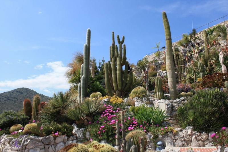Jardin Exotique, Tourismus Eze
