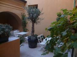 Hotel Rossetti - Excursion to eze