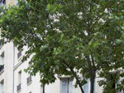 Hôtel de France Invalides - Escapade à eze