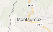 Salon du Cheval de Montauroux – ANNULE
